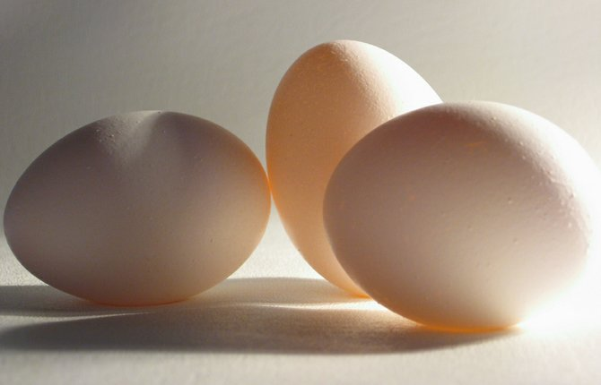 Cal-Maine Foods Inc., a Jackson-based company and the largest egg producer and distributor in the U.S., announced Monday that it lost $3.8 million in its fiscal fourth quarter.