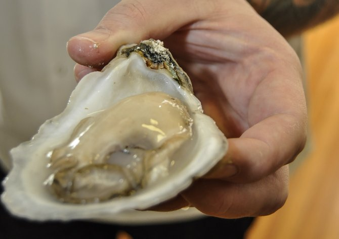Oysters have a storied past including pirates, war and business monopolies.