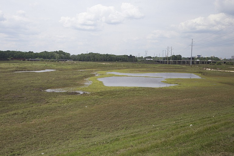 """Representatives pushing the """"One Lake"""" project, which will flood parts of the Pearl River and surrounding wetlands (including the area pictured), say their project will have little to no environmental impact on areas downstream."""