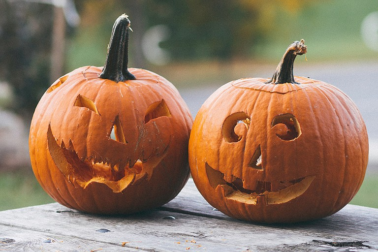 Businesses and organizations around the Jackson area feature a variety of Halloween events throughout the month of October. Photo by Bekir Dönmez on Unsplash