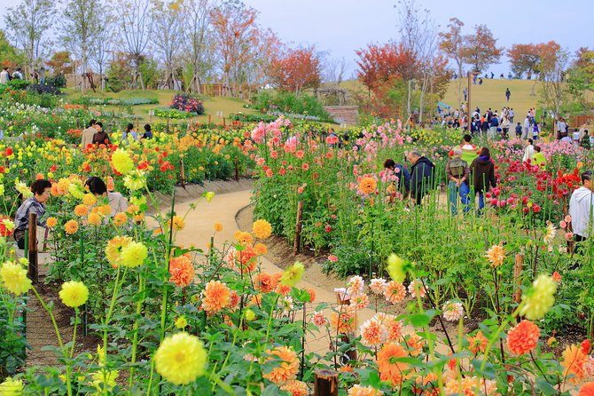 Community gardening will be one of the topics experts will discuss at the Greening Fondren Conference.