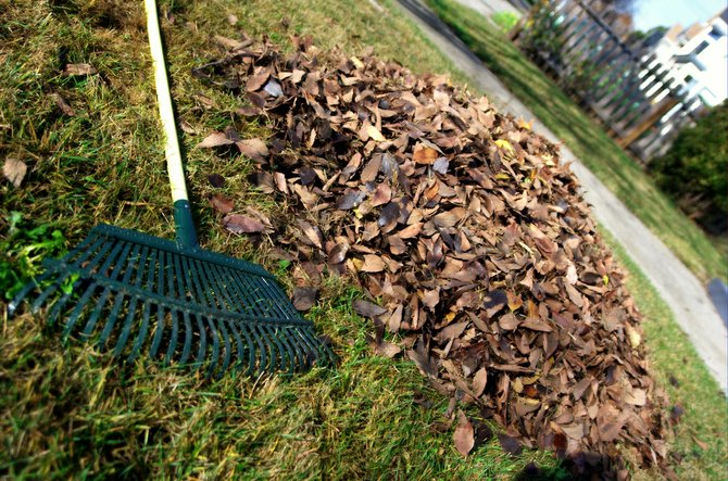 Using leftover vegetation and leaves from your yard and neighbors' as compost will help prepare your garden for spring.