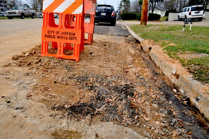 Mayor Harvey Johnson Jr. hopes to alleviate the city's ongoing pothole problem with  $10 million in street repaving funded by a bond issue.