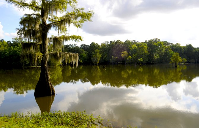 Mayes Lake is a wonderful spot to bring your family on a beautiful day.