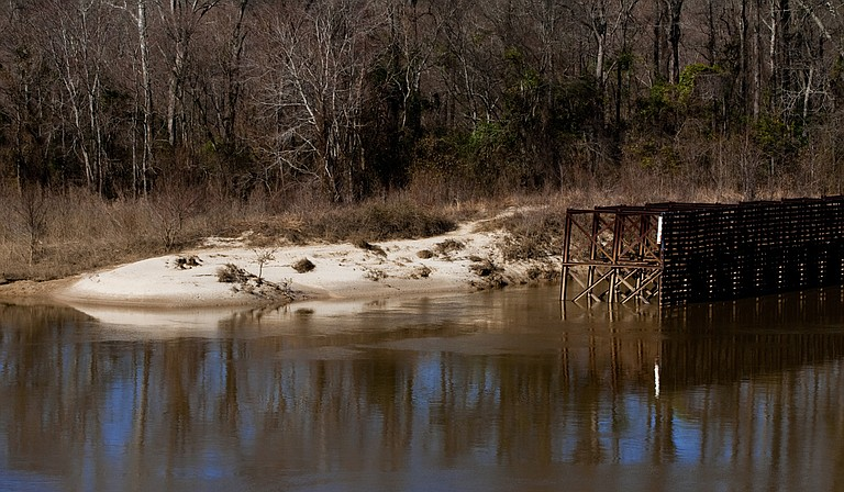 American Rivers argues that reducing the flow of the Pearl River could jeopardize three threatened species, flood prime bird habitat, change the levels of saline in the Mississippi Sound and impact the basin that includes the Pearl River Wildlife Management Area and Honey Island Swamp. Photo courtesy Thomas Beck