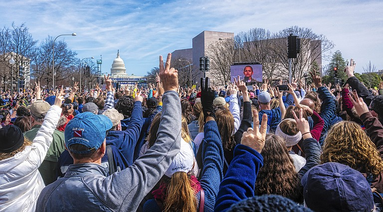 """It gladdened my heart when I saw young people—including students of mine like Jaz Brisack—marching and demanding an end to politically sanctioned gun lawlessness in the recent """"March for Our Lives"""" in Washington, D.C., Jackson, Oxford and across the nation. Photo: https://bit.ly/2H4IoNX"""