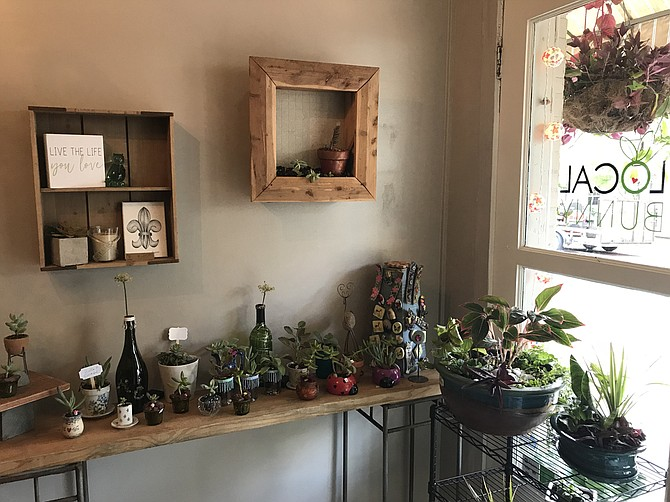 Local Bunny Market sells herbal tea, natural skin-care products, handmade soap, T-shirts, purses, artwork, houseplants, succulents, hanging plant baskets and more.