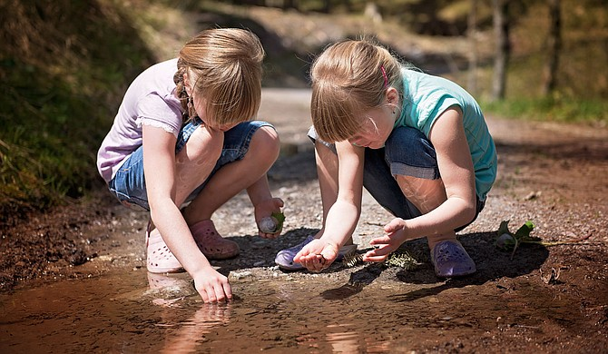 Mississippi is rife with creeks and riverbeds full of tadpoles, perfect for the first of Baker's list of '70s-inspired summer activities for kids, growing frogs. Photo courtesy Pixbay