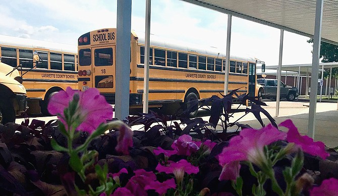 An entire fourth grade class in Mississippi is in quarantine after a student and more than half of a school's fourth grade teachers tested positive for coronavirus. Photo courtesy Lafayette County Schools