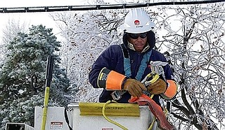 An Entergy lineman works to restore power. Fallen frozen tree limbs damaged power lines across the city. Workers must remove the tree limbs before they can restore power. Photo courtesy Entergy