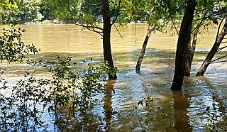 People are being advised for the third year in a row to avoid swimming, fishing and other recreational activities in the river and creeks in Mississippi's capital city, after a recent evaluation from the state environmental agency. Photo by Zilpha Young